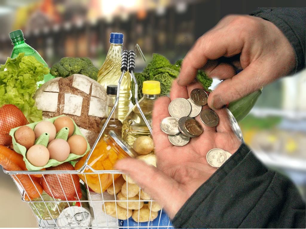 Пересчитать продовольственную корзину прожиточного минимума просит депутат